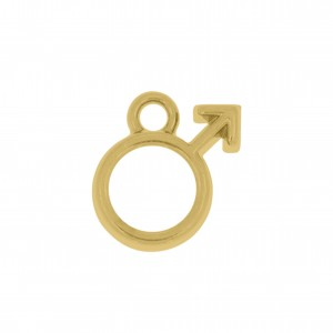 Pingente Ouro Símbolo Homem 12mm